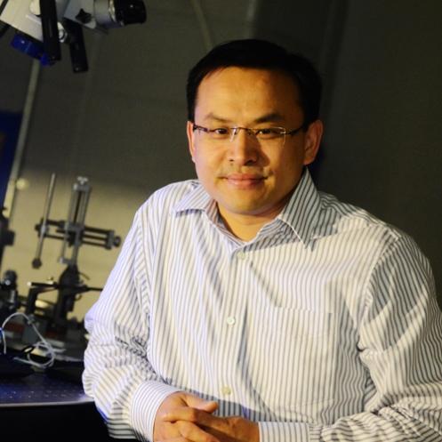 Qi Wang | Writing the Information into the Brain